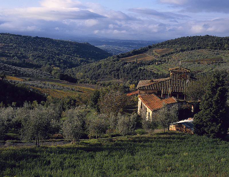 Tuscany is the jewel of Italy.