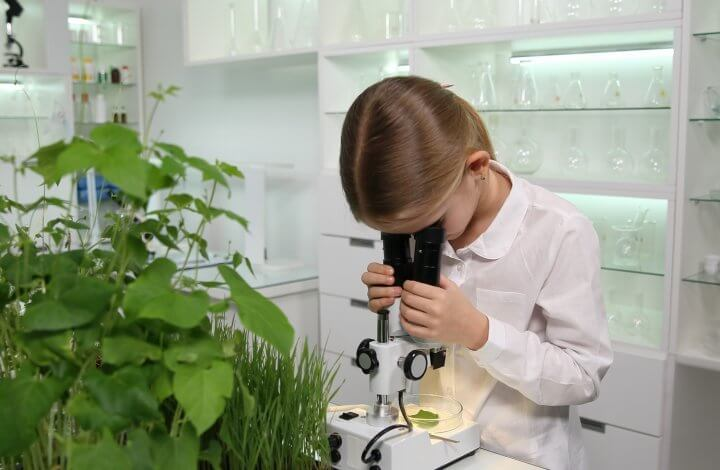 Five Ideas for Microbiology Science Fair Projects