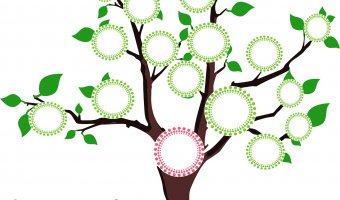 3 Reasons Why a Family Tree is Important for Your Children